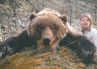 grizzly3
