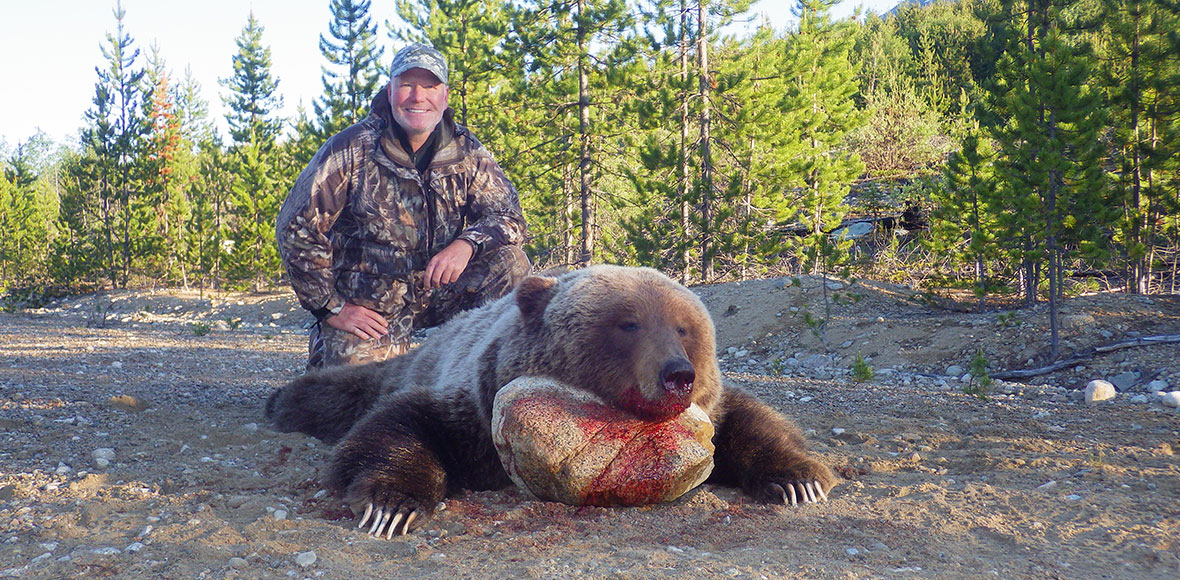 Grizzly Hunts in BC
