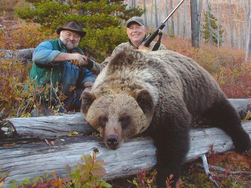Grizzly Photo Gallery