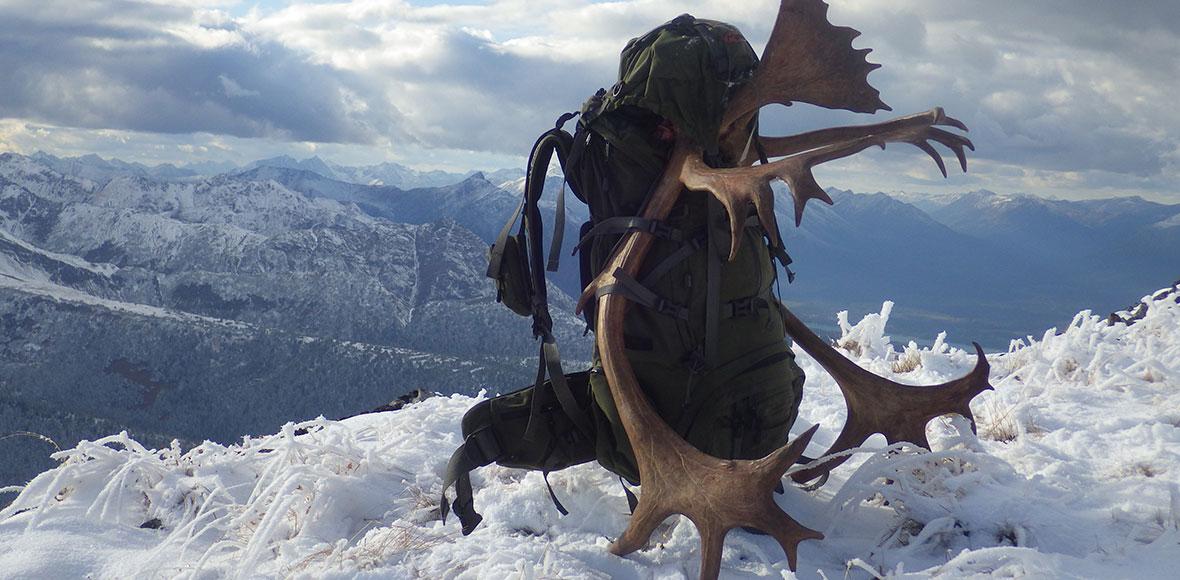 BC Mountain Caribou Hunt